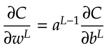 chain rule dc_dw